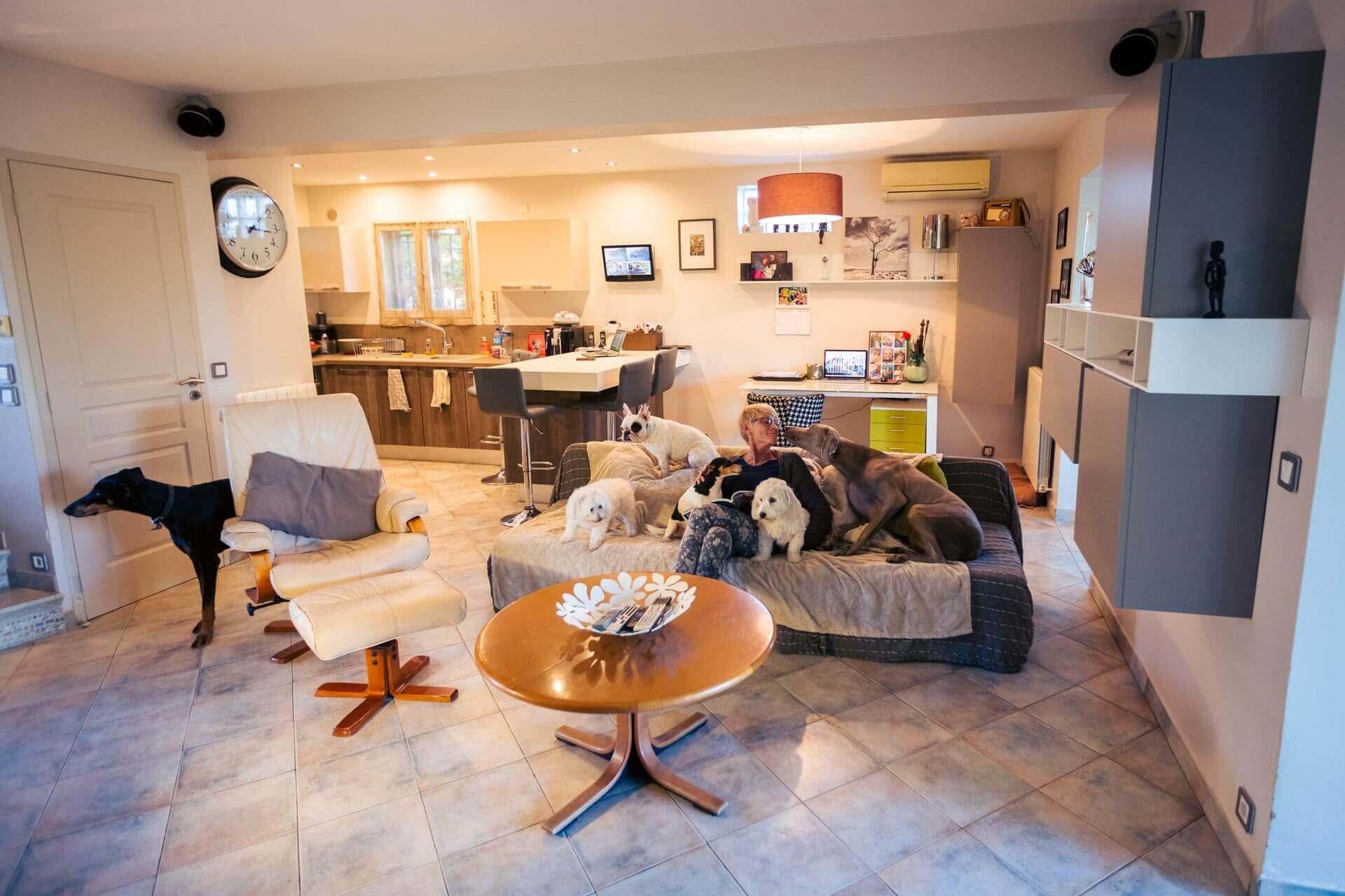 pension des cabots salon pour chien